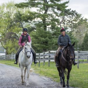 horse-connecticut-trail-riding
